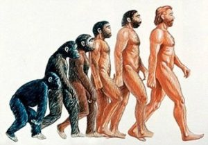 Anthropology Essay